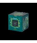 Thé vert menthe bio box métal